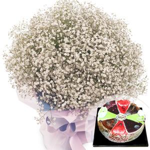 안개꽃사랑(케익랜덤무료증정)